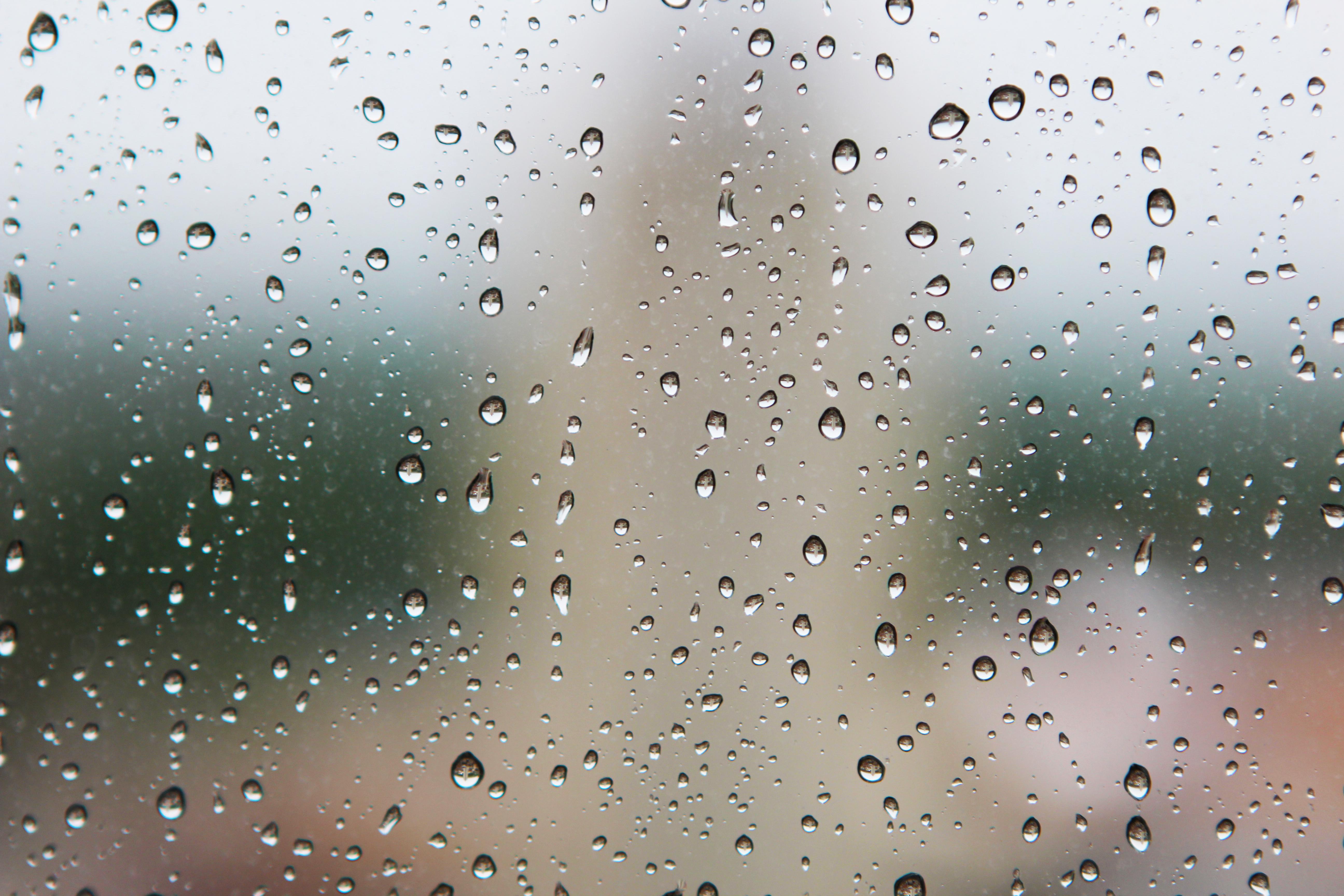 Prevent Damp CMH Plasterers Leeds